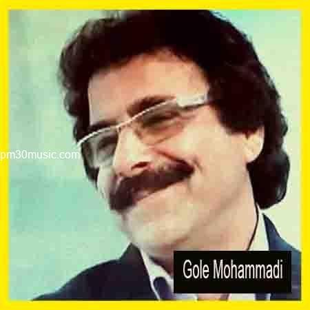 دانلود اهنگ علیرضا افتخاری بنام گل محمدی