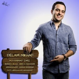 محمد زارع دلم میخواد