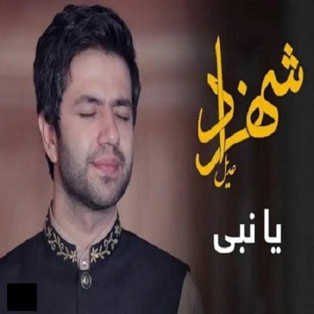 دانلود آهنگ جدید افغانی شهزاد عادل به نام یا نبی