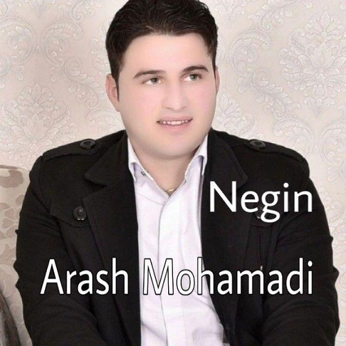 آرش محمدی نگین